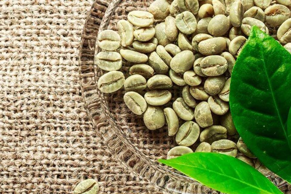 Why the green coffee bean isn't really a bean at all?